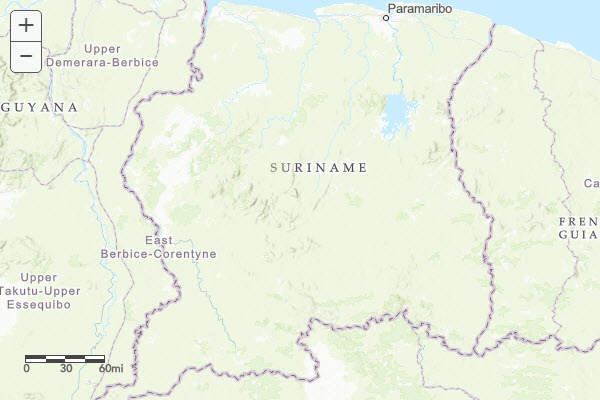 Custom topographic map for Suriname