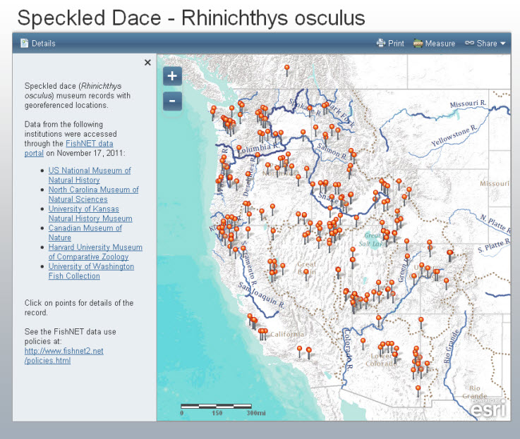 Speckled Dace Web Mapping Application
