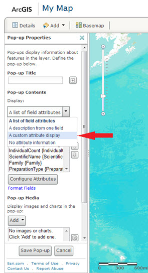 "Set the pop-up contents to ""A custom attribute display""."